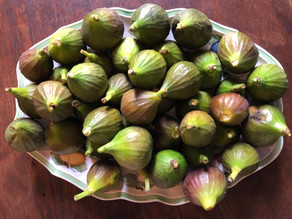 Mirabelles and Figs; the July kitchen