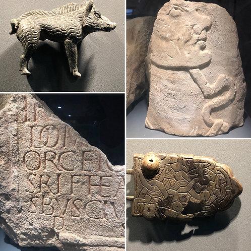 Romans in Gaul