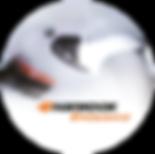 Logo 1 Hankook Xperience Macaron.png