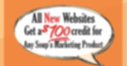 Website $100credit-01 min.jpg