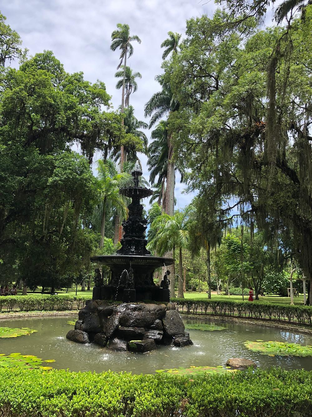 Botanical Gardens Rio de Janeiro Brazil