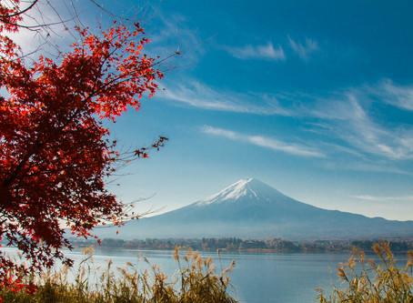 JAPAN | THE SECOND SPRING IN TOKYO - KAWAGUCHIKO