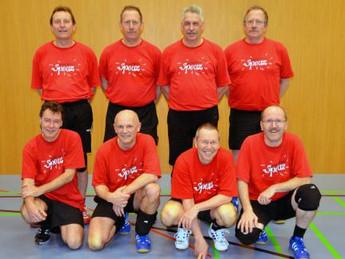 Männerriege Volleyball Wintermeisterschaft 2012/2013