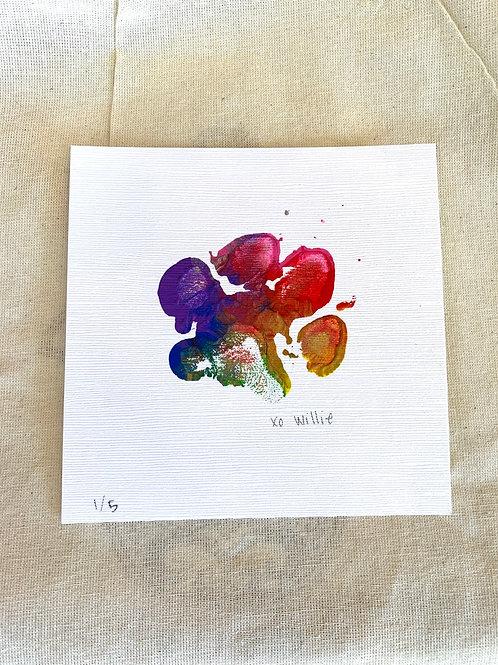 Willie's Art - Rainbow Matte series 1/5