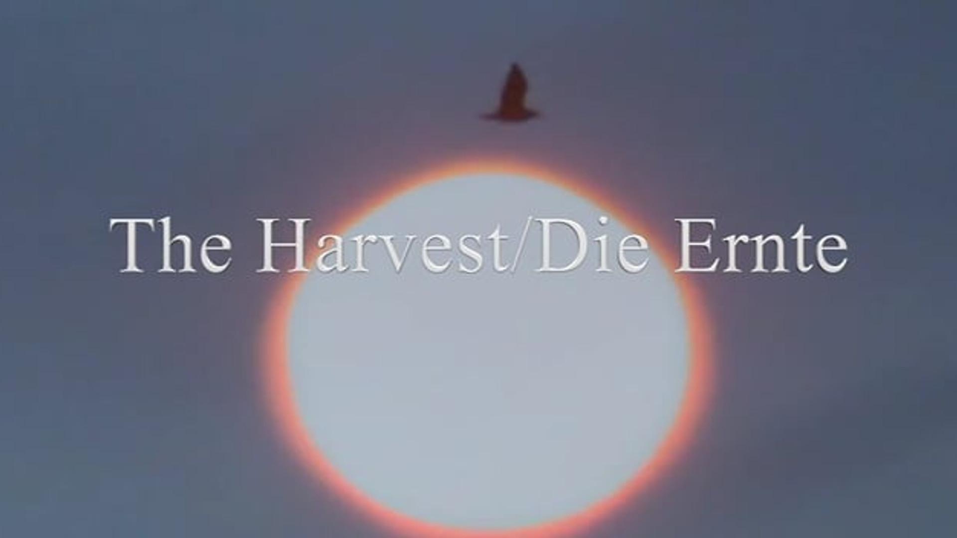 The Harvest/Die Ernte
