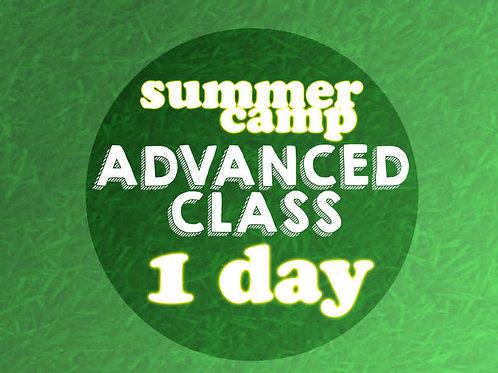 Advanced 1 Day Camp