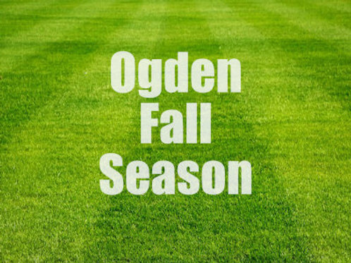 Saturday Morning Off The Wall - Ogden Season