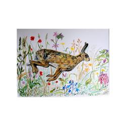 Hare in Meadow Flowers
