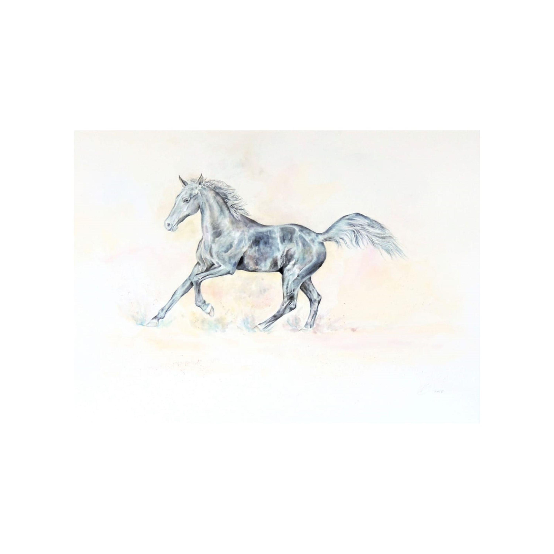 Fine Arabian Horse