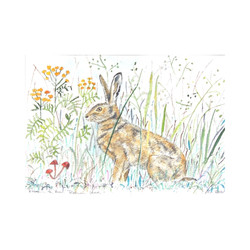'Ready to Run' Brown Hare
