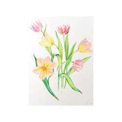 Pink & Yellow Tulips