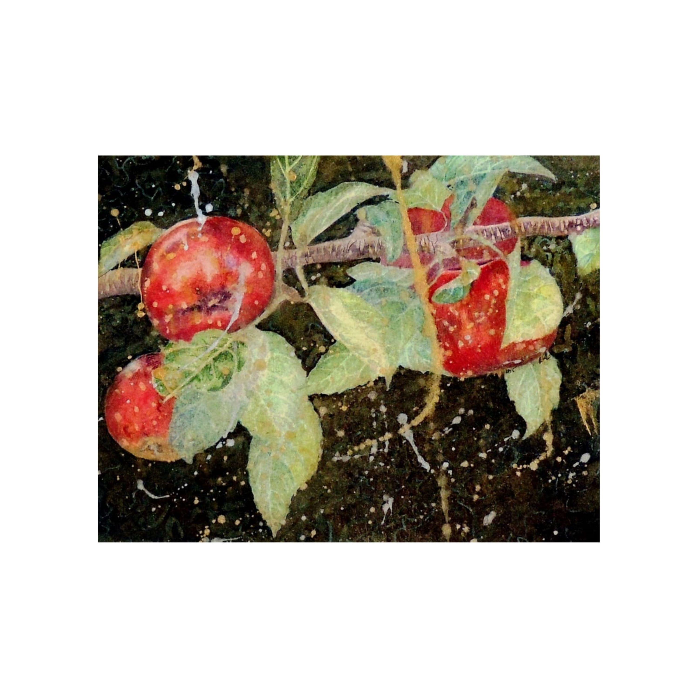 Ripening Apples