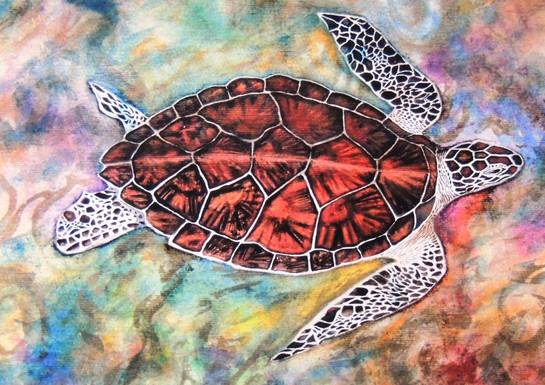 Hawksbill Turtle. Limited Edition Print
