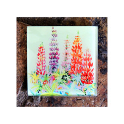 Cottage Lupins Glass Coaster