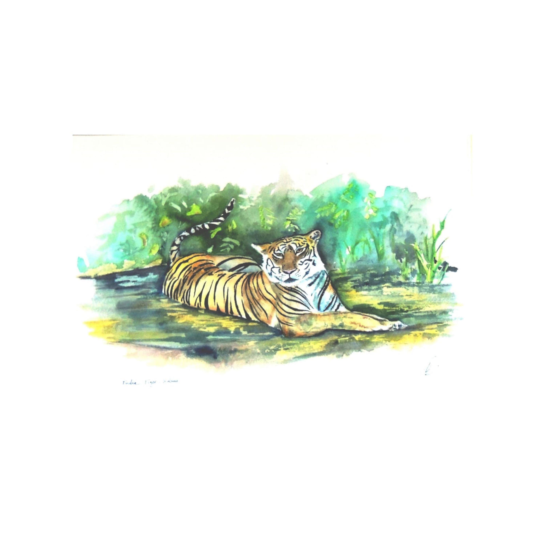 Indian Tiger Cooling Off