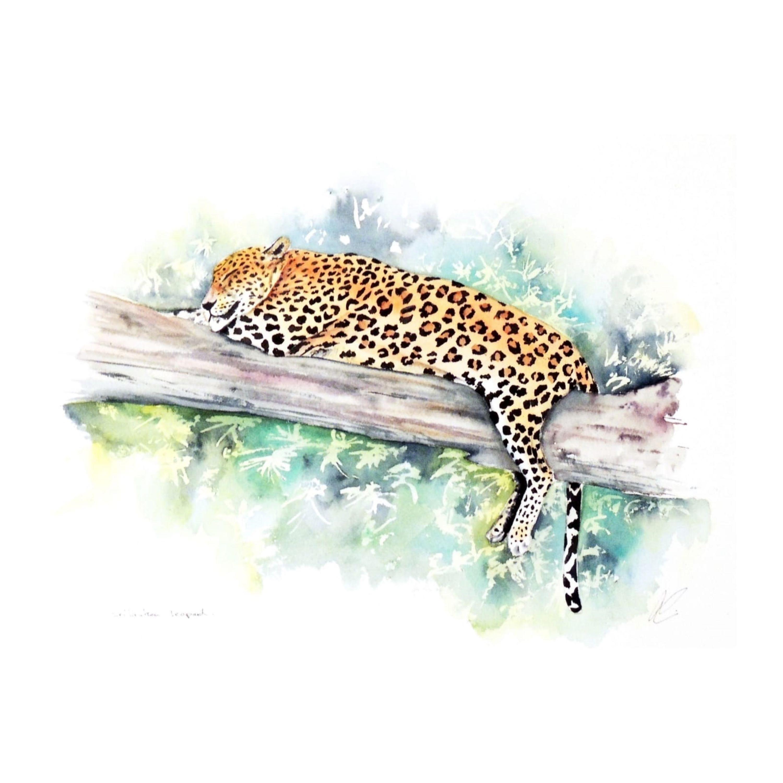Mias the |Leopard