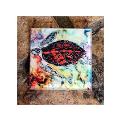 Hawksbill Turtle Glass Coaster
