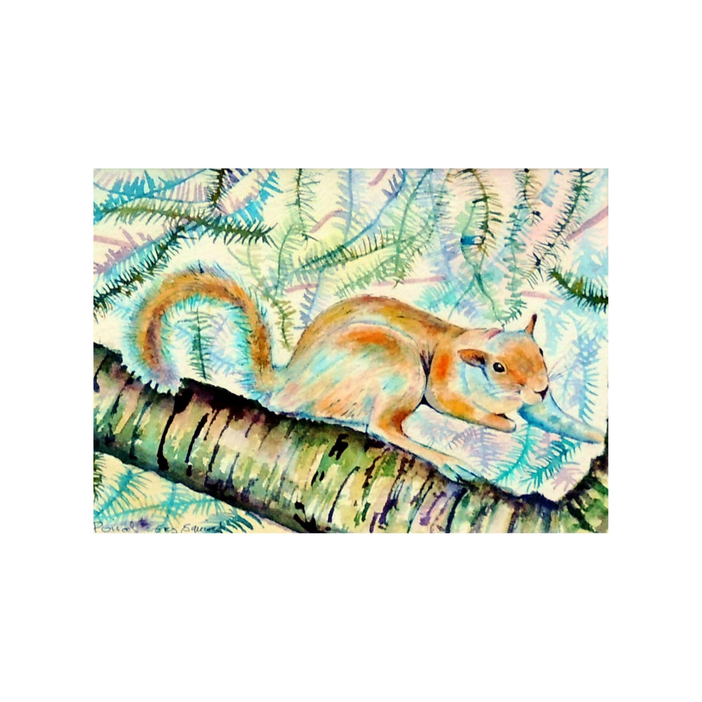 'Poised' Squirrel