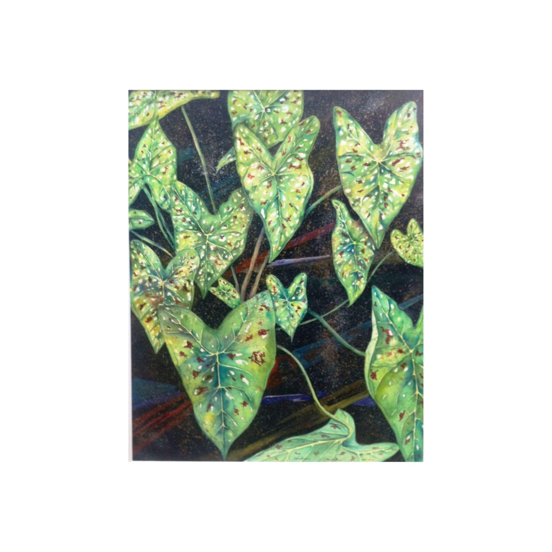 Green Caladium Leaves