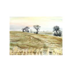 Across the Fields in the Fens