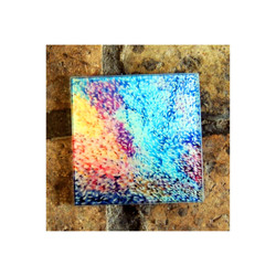 Rainbow Fish Glass Coaster