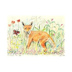 'Entranced Fox Cub'