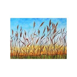Golden Reeds at Sunrise