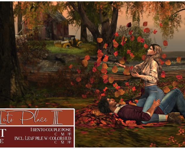 Ardent Poses - Falling Into Place III AD