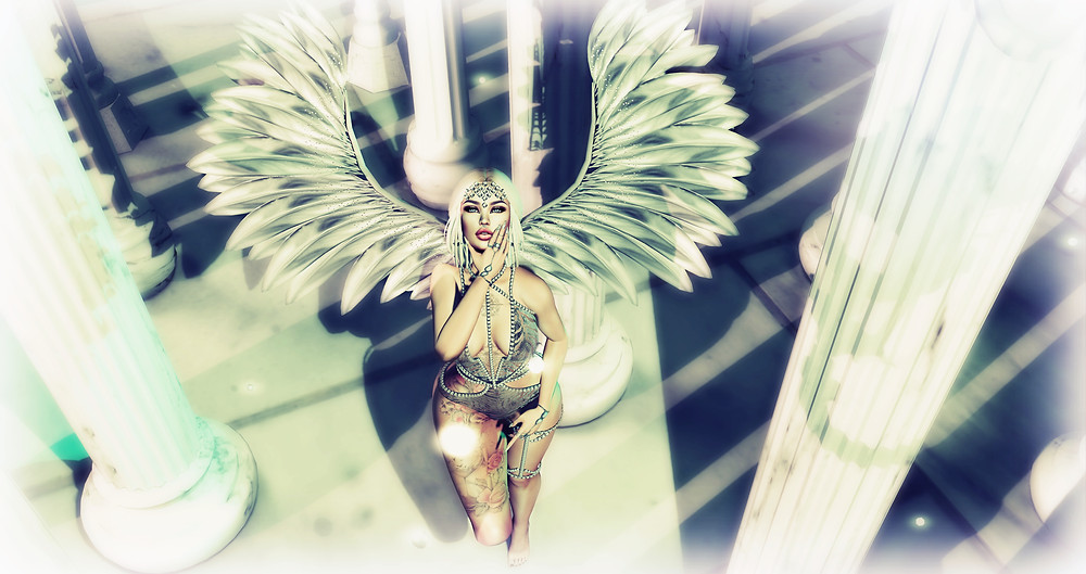 wings_3