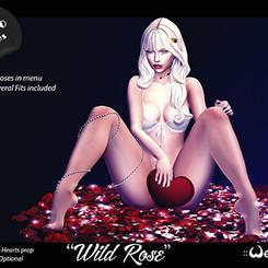 wild rose thumb.jpg