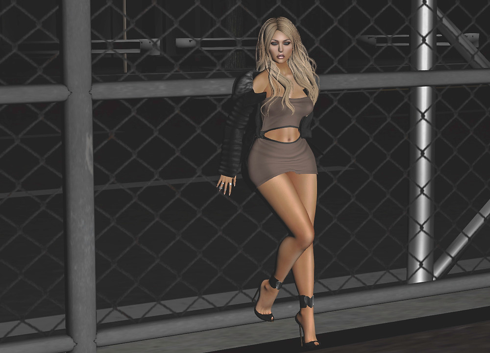 ChicModa fence_final