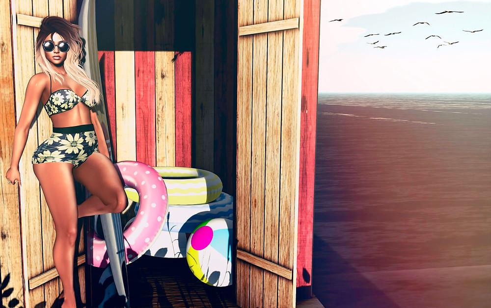 beach hut vintage_final2354695955366836697..jpg