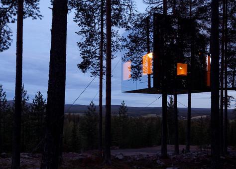 Na Suécia, hospede-se em uma árvore.