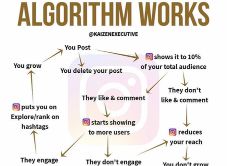 Feed The Monster - 5 Ways on how to beat the Instagram algorithm