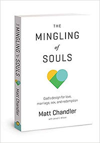 the mingling of souls book.jpg