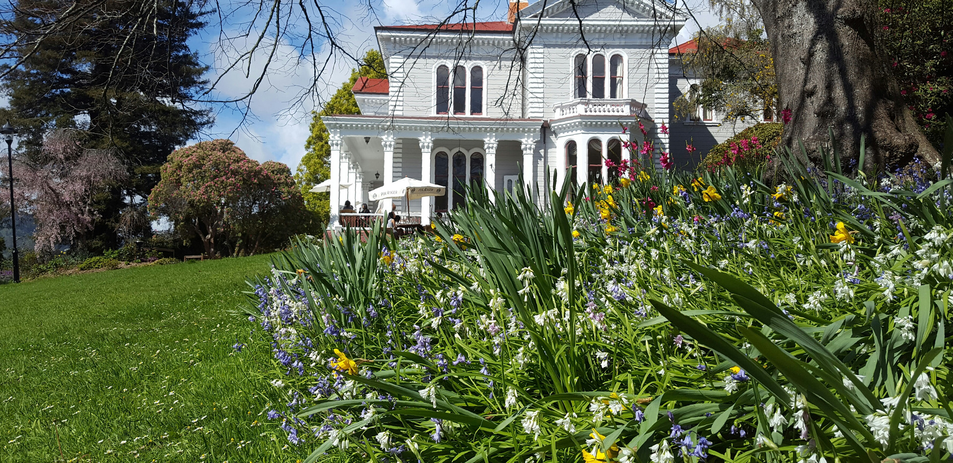 Melrose House Gardens