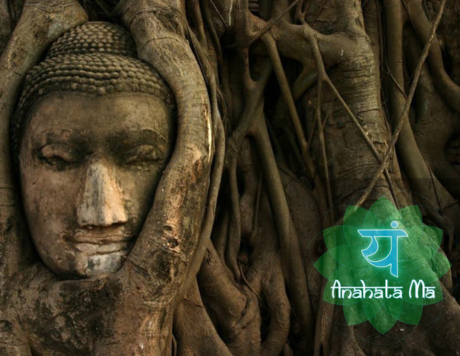 ॐ Mindfulness and Vipassana - The Art of Knowing Now // Berlin, Germany ॐ