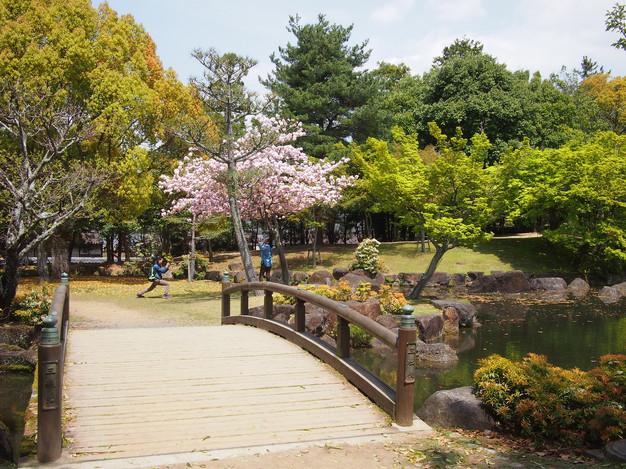 18. Nara, Kyoto.jpg