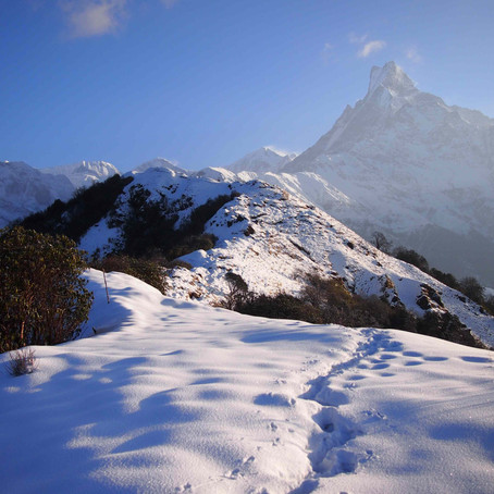 Guide to the Mardi Himal Trek