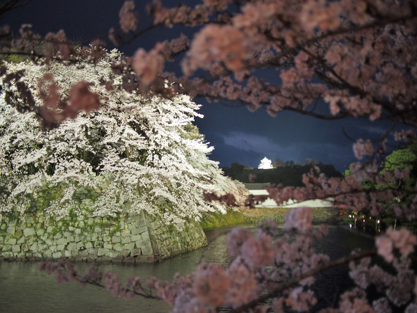 05. Hikone Castle, Hikone.jpg