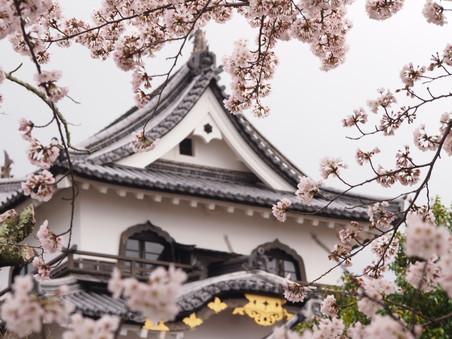 hikone | japan