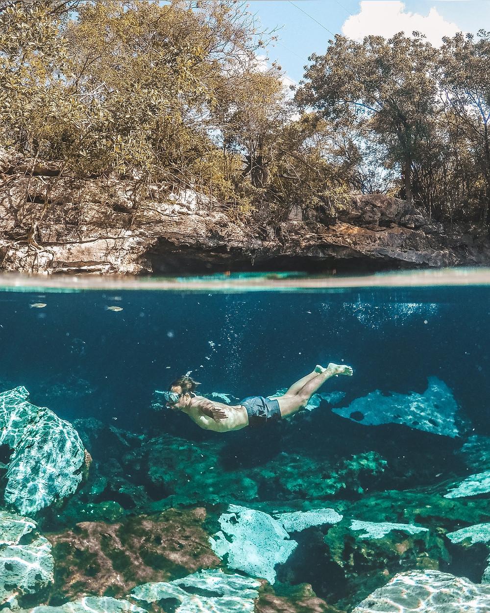 Cenote Azul, Yucatán, Mexiko, Unterwasser Aufnahme