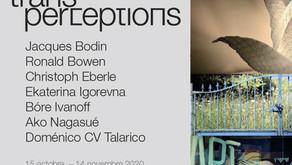 TRANSPERCEPTIONS/ Exposition