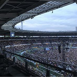 Concerti Olimpico Torino2.jpg