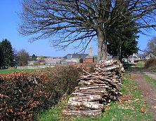 Le Mesnil.jpg