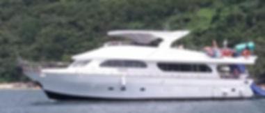 Special FX Cruiser.jpg