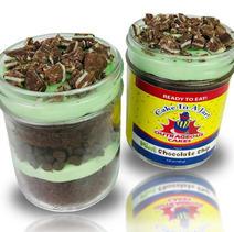 8 oz Mint Chocolate Chip