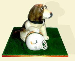 Miami Hurricanes Dog