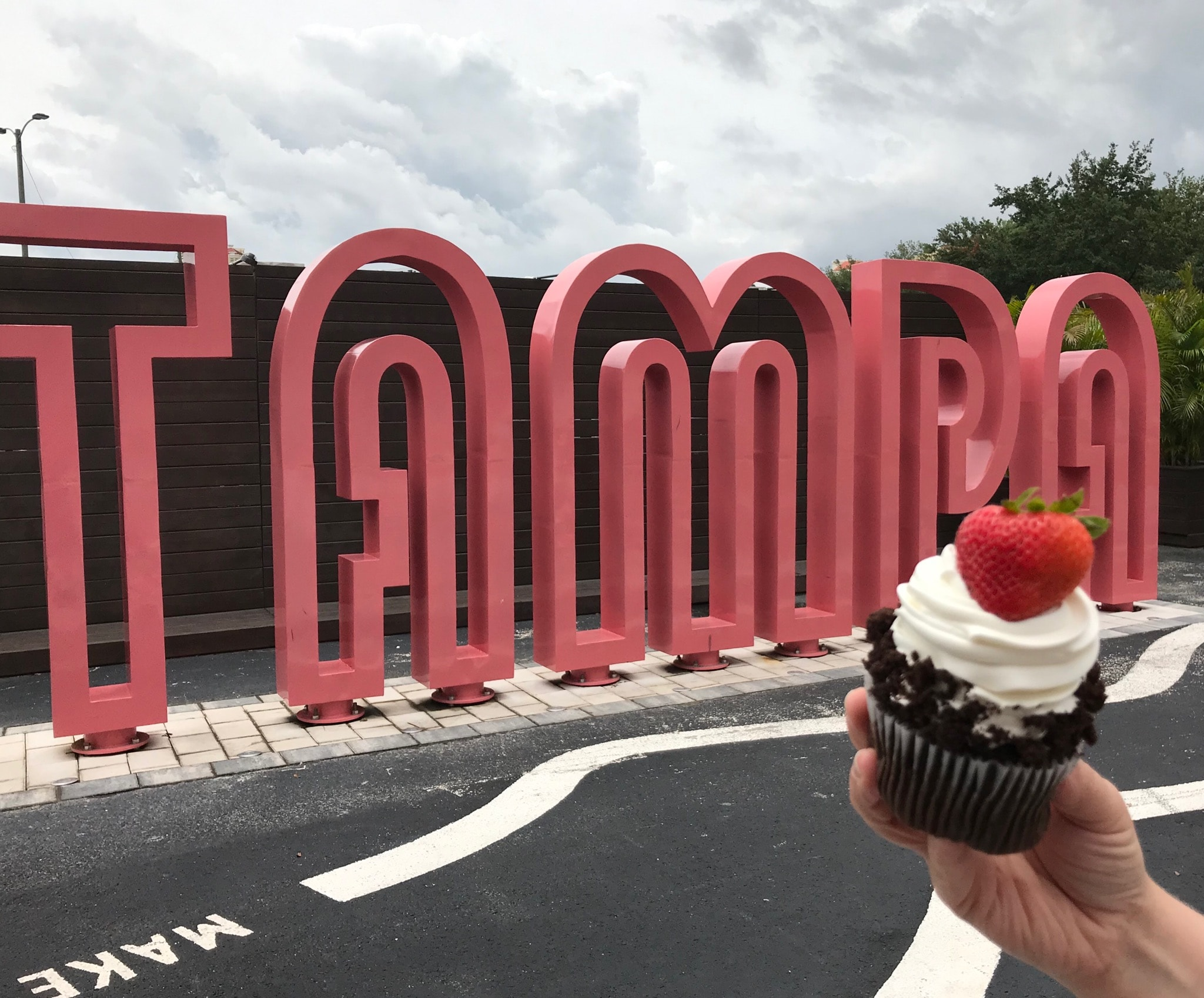 Tampa Custom Cakes and Cupcakes