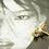Thumbnail: 飛翔 鈦金屬手工鑄造耳飾AGF